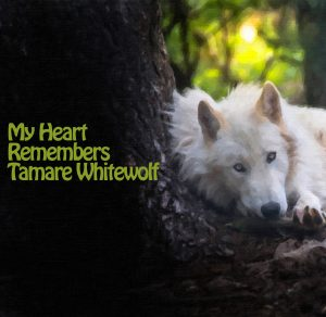 My Heart Remembers – 45 – Tamare White-Wolf